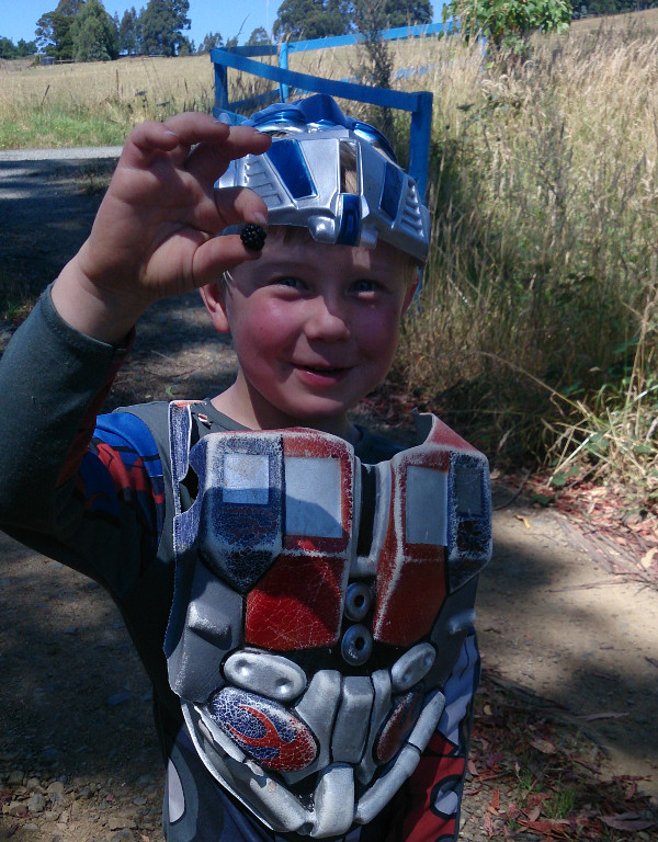 Optimus Prime recommends blackberries!