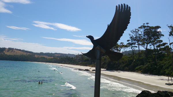 The eagles over looking the beach
