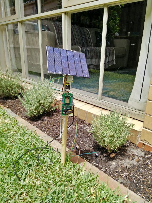 Prototype in the garden